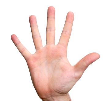 mano cinco dedos